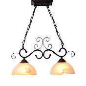 Elegant Pendant Light with 2 Lights