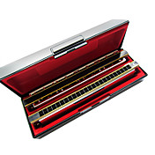Kaine - (K2411) Professional Tremolo Harmonica 2 keys/24 Holes/48 Tones