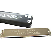 Kaine - (K2402-1) Intermediate Octave Thicken Harmonica C key/24 Holes/48 Tones