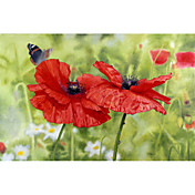 Printed Art Floral Poppies And Butterfly by Bill Makinson
