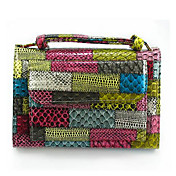 Lady's Cute Multi Color Clutch