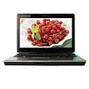 "Hasee Laptop-14.0 geführt ""Intel Core 2 (Penryn) T6600 2.2g-1GB DDR2-250g-ATI HD 4530-Webcam-DVD-RW (smq3813)"