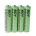 BDY 750mAh Ni-MH AAA oplaadbare batterijen (4-pack)