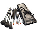 Professional Brush Set With Dark Lovely Pouch(10 Pcs)