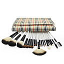 Professional Brush Set With Dark Lovely Pouch(20 Pcs)