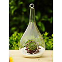 Artistic Drop Shaped Hanging Glass Vase