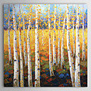 "Hand-painted Landscape Oil Painting with Stretched Frame 24"" x 24"""