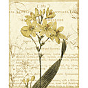 Printed Art Botanical Yellow Floral by Philippa
