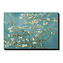 Almond Branches in Bloom, San Remy, c.1890 by Vincent Van Gogh Famous Stretched Canvas Print